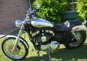 For sale Harley Sportster